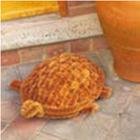 Скребок для чистки обуви  Черепаха, кокосовое волокно на стальной рамке
