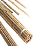 Колья бамбуковые 60cm (20шт)