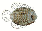 Декор настенный Рыба 45cm x 35cm
