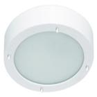 Светильник настенно потолочный галогенный для ванной комнаты. диам 280мм. 2хG9,25W,220V,  IP23, сталь, стекло.